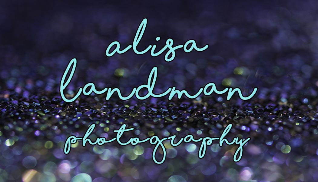 Alisa Landman